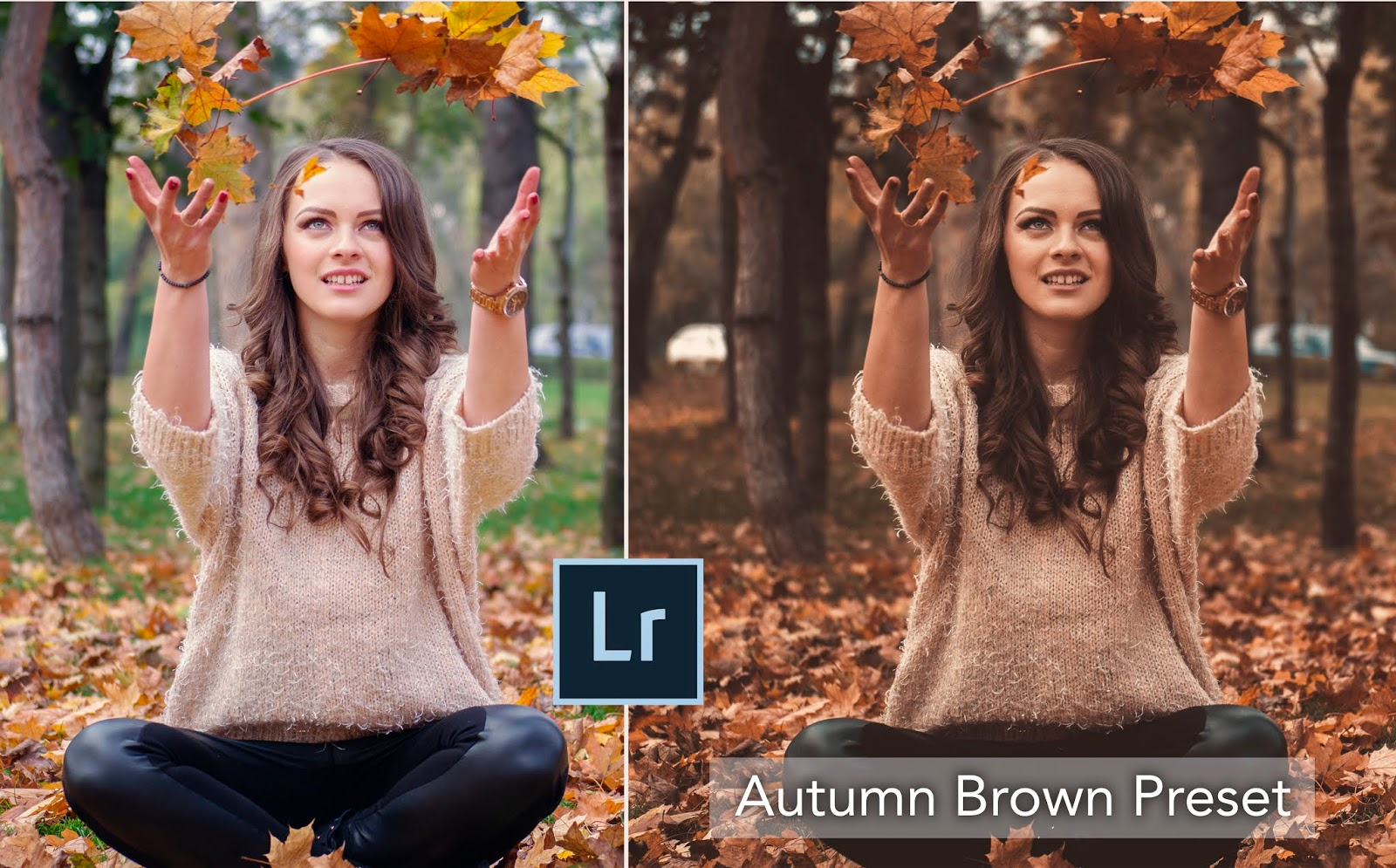 Download Free Autumn Preset for Free | How to Create Autumn Look in Lightroom