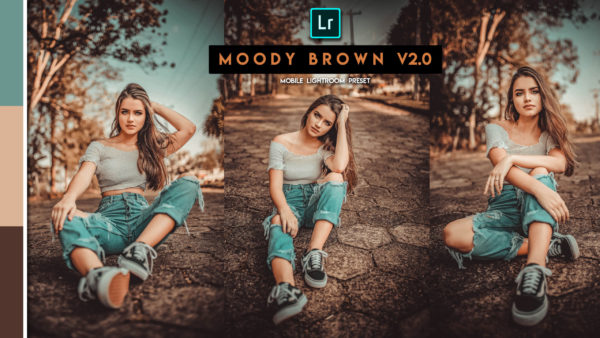 Download Moody Brown v2.0 Lightroom Mobile Presets DNG of 2020 for Free | Moody Brown v2.0 Mobile Lightroom Preset DNG of 2020 Download free