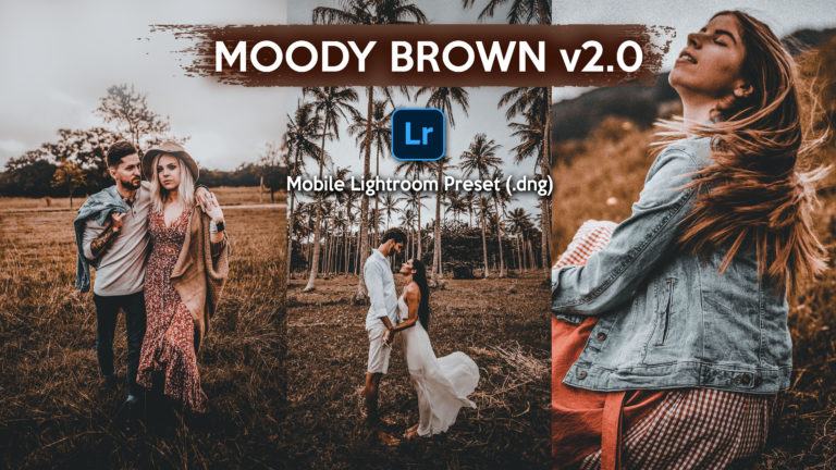 Download Moody Brown v2.0 Lightroom Mobile Presets DNG of 2020 for Free | Moody Brown Mobile Lightroom Preset DNG of 2020 Download free | How to Edit Like Moody Brown Effect