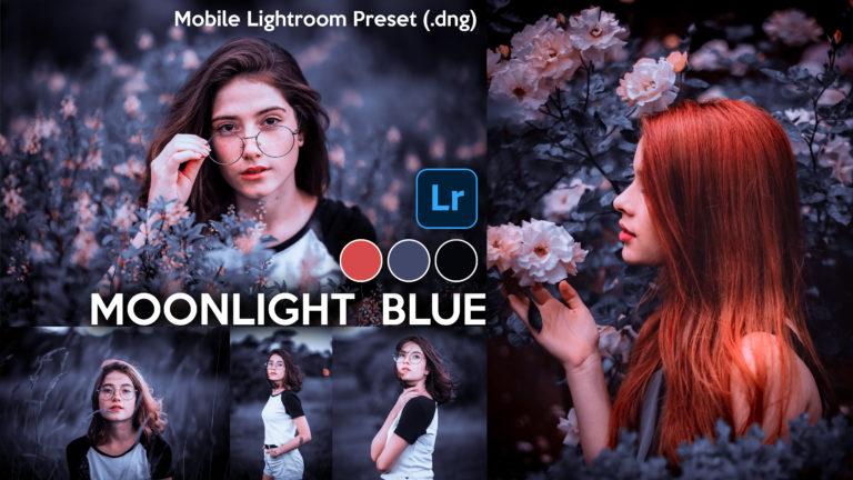 Download Moonlight Blue Lightroom Mobile Presets DNG of 2020 for Free   Moonlight Blue Mobile Lightroom Preset DNG of 2020 Download free   How to Edit Like Moonlight Blue Effect