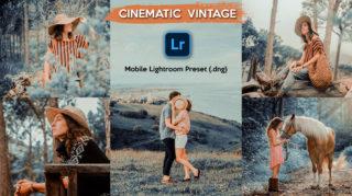 Download Cinematic Vintage Lightroom Mobile Presets DNG of 2020 for Free | Cinematic Vintage Mobile Lightroom Preset DNG of 2020 Download free | How to Edit Like Cinematic Vintage Effect