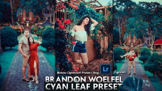 Download Brandon Woelfel Inspired Cyan Leaf Mobile Presets DNG of 2020 for Free | Brandon Woelfel Inspired Cyan Leaf Mobile Lightroom Preset DNG of 2020 Download free | How to Edit Like Brandon Woelfel Inspired Cyan Leaf Tone