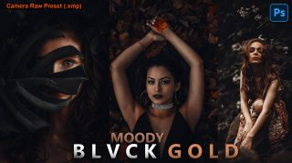 Moody BLVCK GOLD Camera Raw XMP Preset of 2021 for Free | Moody BLVCK GOLD Camera Raw Preset of 2021 Download free XMP Preset