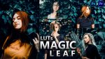 Magic LEAF LUTs of 2021 | How to Colorgrade Magic LEAF Effect to Photos & Videos in Photoshop & Premiere Pro