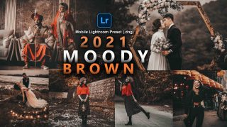 Moody Brown Lightroom Mobile Presets DNG of 2021 for Free | Moody Brown Mobile Lightroom Preset DNG of 2021 for free