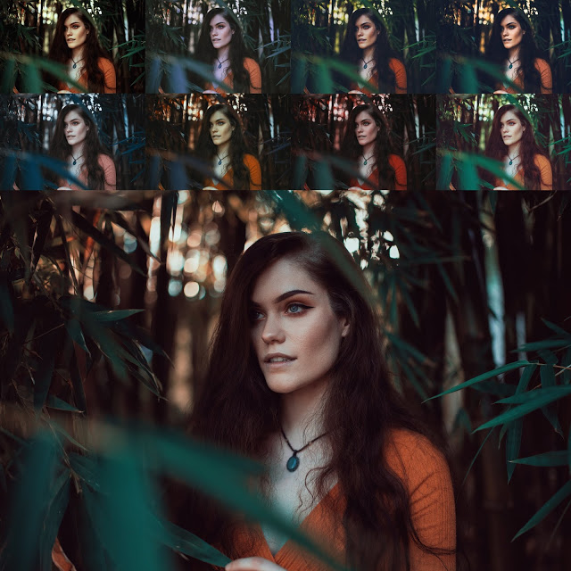 Download Free Top 50 LUTs of 2020 from Ash-Vir Creations