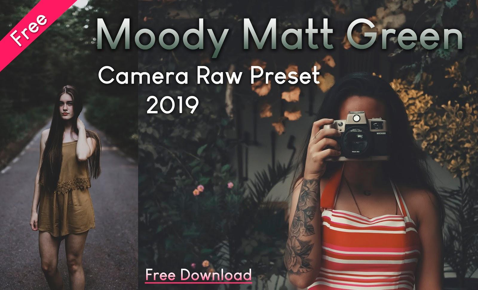 Download Free Moody Matt Green Camera Raw Preset of 2020