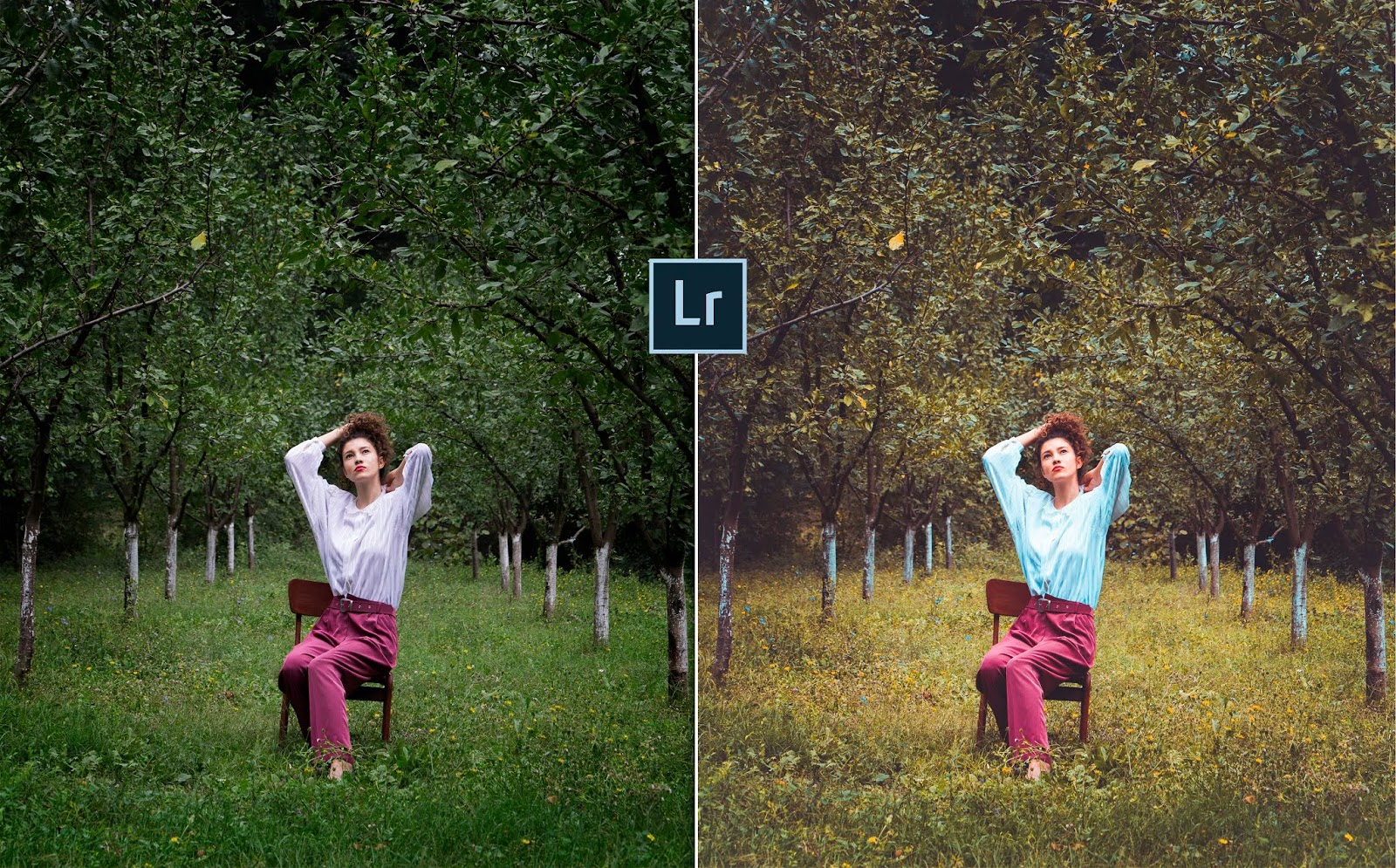 How to Pop Out Photo in Lightroom | How to Make Autumn Effect in Lightroom