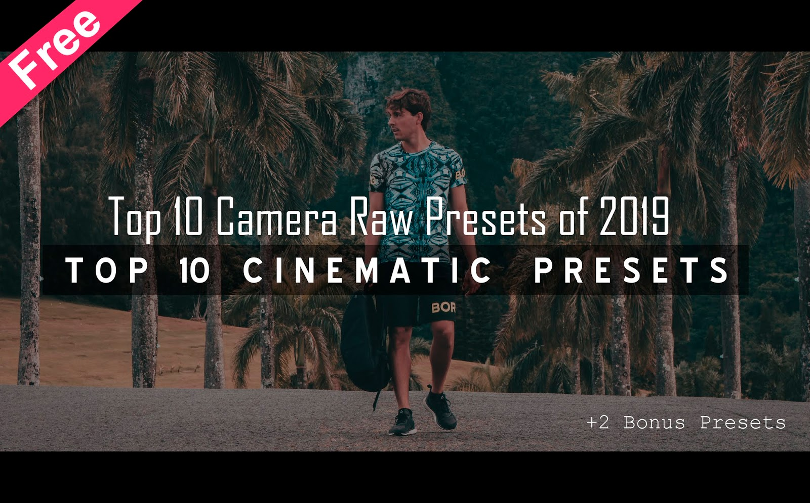 Download Top 10 Cinematic Camera Raw Presets of 2020 for Free | Cinematic Camera Raw Preset Free Download