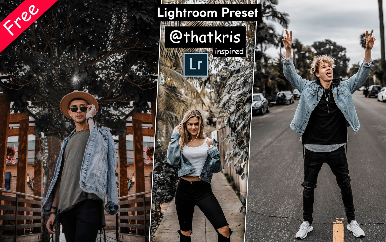 Download @thatkris inspired Lightroom Presets for Free | How to Edit Photos Like @thatkris in Lightroom