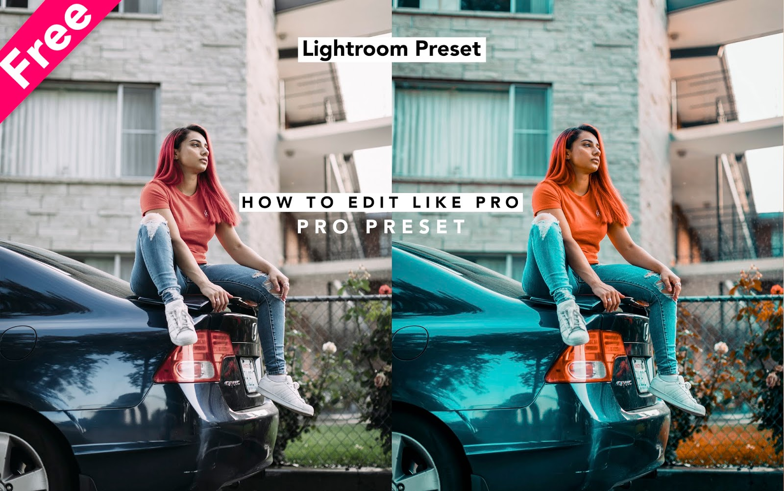 Download Pro Lightroom Preset For Free How To Edit Photos Like A Pro In Lightroom Ash Vir Creations