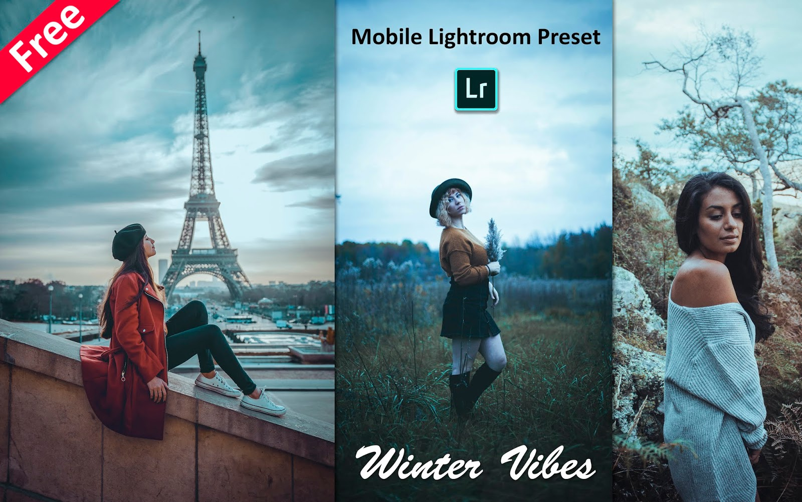 Download Winter Vibes Mobile Lightroom Preset | How to Edit Winter Cold Effect in Mobile Lightroom App