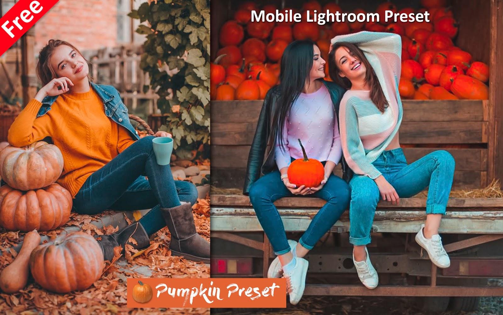 Download Pumpkin Mobile Lightroom Preset for Free | How to Edit Photos Like Pumpkin Effect in Mobile Lightroom App