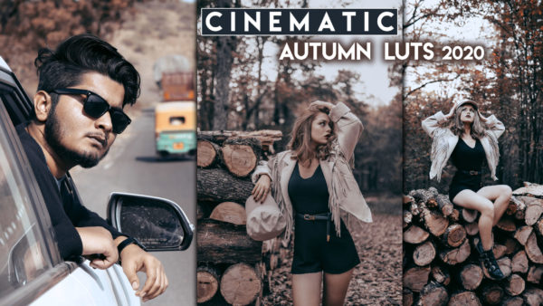Download Cinematic Autumn LUTs of 2020 for Free | Cinematic Autumn LUTs Download Free