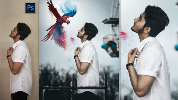 Colorful Parrot | Give Me Colors Photo Editing Concept Like Vijay Mahar in Photoshop