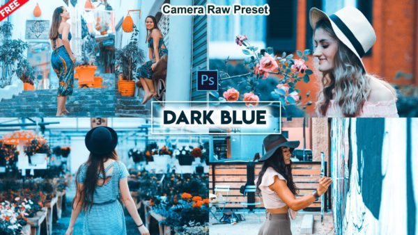 Download Dark Blue Camera Raw Preset of 2020 for Free | Dark Blue Camera Raw Preset Pack of 2020 Download free