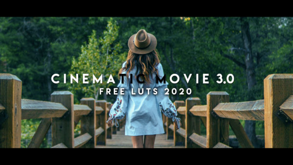 Download Free Cinematic Movie 3.0 LUTs of 2020 | How to Make Cinematic Videos in Premiere Pro
