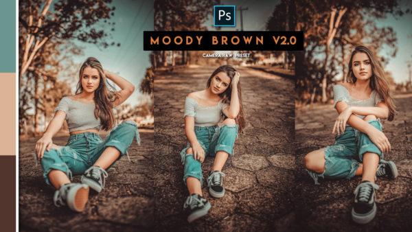Download Moody Brown v2.0 Camera Raw Preset of 2020 for Free | Moody Brown v2.0 Camera Raw Preset of 2020 Download free