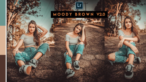 Download Moody Brown v2.0 Lightroom Presets of 2020 for Free | Moody Brown v2.0 Desktop Lightroom Presets