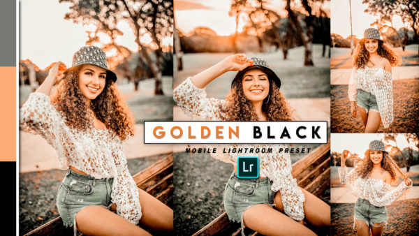 Download Golden BLACK  Lightroom Mobile Presets DNG of 2020 for Free | Vintage Brown Mobile Lightroom Preset DNG of 2020 Download free