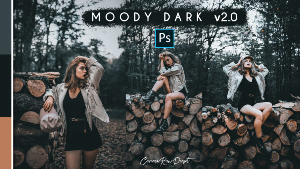 Download Moody Dark v2.0 Camera Raw Preset of 2020 for Free | Moody Dark v2.0 Camera Raw Preset of 2020 Download free