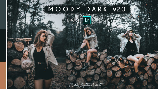 Download Moody Dark v2.0 Lightroom Mobile Presets DNG of 2020 for Free | Moody Dark v2.0 Mobile Lightroom Preset DNG of 2020 Download free