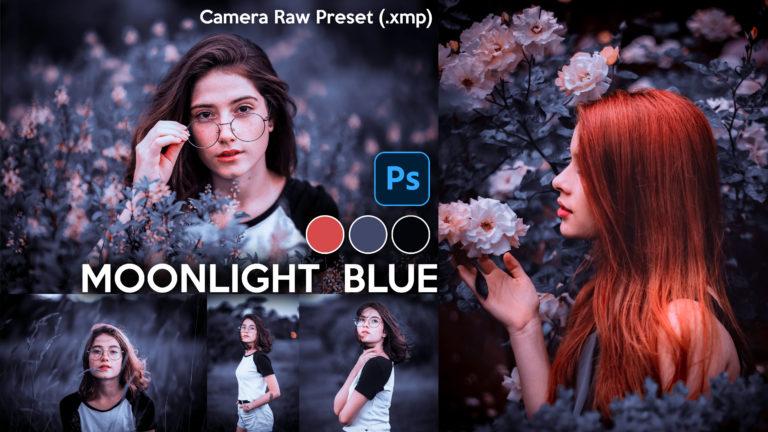 Download Moonlight Blue Camera Raw XMP Preset of 2020 for Free | Moonlight Blue Camera Raw Preset of 2020 Download free XMP Preset | How to Edit Like Moonlight Blue Colorgrading