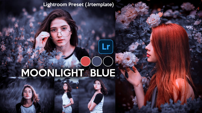 Download Moonlight Blue Lightroom Presets of 2020 for Free | Moonlight Blue Desktop Lightroom Presets | How to Edit Like Moonlight Blue Colorgrading
