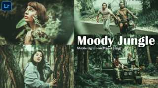 Download Moody Jungle Lightroom Mobile Presets DNG of 2020 for Free | Moody Jungle Mobile Lightroom Preset DNG of 2020 Download free | How to Edit Like Moody Jungle Effect