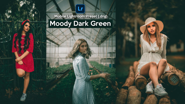 Download Moody Dark Green Lightroom Mobile Presets DNG of 2020 for Free | Moody Dark Green Mobile Lightroom Preset DNG of 2020 Download free | How to Edit Like Moody Dark Green