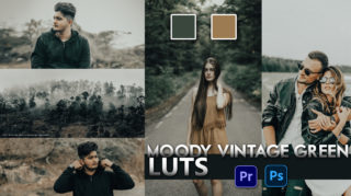 Download Free Moody Vintage Green LUTs | How to Colorgrade Photos & Videos Like Moody Vintage Green in Photoshop & Premiere Pro