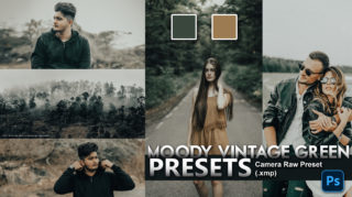 Download Moody Vintage Green Camera Raw XMP Preset of 2020 for Free | Moody Vintage Green Camera Raw Preset of 2020 Download free XMP Preset | How to Edit Like Moody Vintage Green