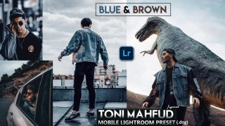 Download Toni Mahfud Inspired Blue & Brown Lightroom Mobile Presets DNG of 2020 for Free | Toni Mahfud Inspired Blue & Brown Mobile Lightroom Preset DNG of 2020 Download free | How to Edit Like Toni Mahfud Blue & Brown Tone