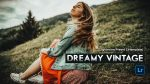 Download VINTAGE Dream Lightroom Presets of 2020 for Free | VINTAGE Dream Desktop Lightroom Presets | How to Edit Like VINTAGE Dream Tone