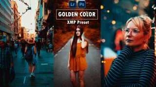 Download Golden Color XMP Preset of 2020 for Free | Camera Raw Preset + Lightroom Preset