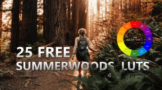 Download 25 Free SUMMERWOODS LUTs of 2020 | Free Download | How to Install LUTs in Photoshop | LUTs PACK 2020