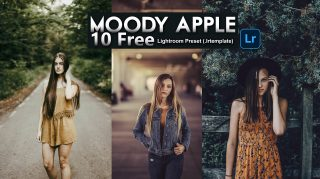 Download 10 FREE Moody Apple Lightroom Presets of 2020 for Free | 10 FREE Moody Apple Desktop Lightroom Presets | How to Edit Like Moody Apple Tone