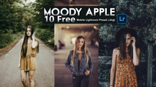 Download 10 FREE Moody Apple Lightroom Mobile Presets DNG of 2020 | 10 Moody Apple Mobile Lightroom Preset DNG of 2020 Download free | How to Edit Like Moody Apple Tone