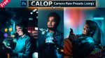 Download Calop Inspired Camera Raw XMP Preset of 2021 for Free | Calop Inspired Camera Raw Preset of 2020 Download free XMP Preset | How to Edit Like Calop Inspired Color