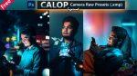 Download Calop Inspired Camera Raw XMP Preset of 2021 for Free | Calop Inspired Camera Raw Preset of 2020 Download free XMP Preset | How to Edit Like Calop Inspired Color