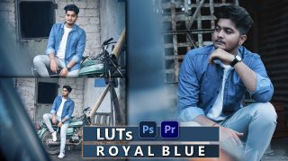 Download Royal Blue Video LUTs of 2021 | How to Colorgrade videos Like Royal Blue Tone Tone