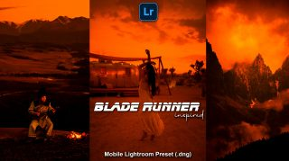 Download Blade Runner Mobile Lightroom Presets DNG of 2021 for Free | Blade Runner Inspired Mobile Lightroom Preset DNG of 2020 Download free | How to Edit Like Blade Runner Tones