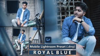 Download Royal Blue Mobile Lightroom Presets DNG of 2021 for Free | Royal Blue Mobile Lightroom Preset DNG of 2020 Download free | How to Edit Like Royal Blue Tones