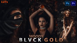 Download Free Moody BLVCK GOLD LUTs 2021 | How to Colorgrade Photos & Videos Like Moody BLVCK GOLD in Photoshop & Premiere Pro