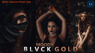Moody BLVCK GOLD Lightroom Mobile Presets DNG of 2021 for Free | Moody BLVCK GOLD Mobile Lightroom Preset DNG of 2021 Download free