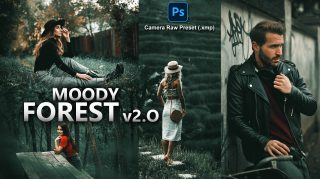 Moody Forest v2.O Camera Raw XMP Preset of 2021 for Free | Moody Forest v2.O Camera Raw Preset of 2021 Free XMP Preset