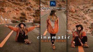 Cinematic Black & Brown Camera Raw XMP Preset of 2021 for Free | Cinematic Black & Brown Camera Raw Preset of 2021 Free XMP Preset