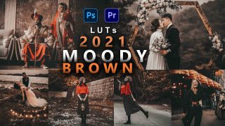 Moody Brown LUTs of 2021 | How to Colorgrade Moody Brown Effect to Photos & Videos in Photoshop & Premiere Pro