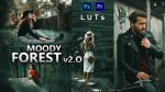 Moody Forest v2.O LUTs of 2021 | How to Colorgrade Moody Forest v2.O Effect to Photos & Videos in Photoshop & Premiere Pro