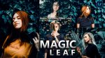 Magic LEAF Lightroom Mobile Presets DNG of 2021 for Free | Magic LEAF Mobile Lightroom Preset DNG of 2021 for free